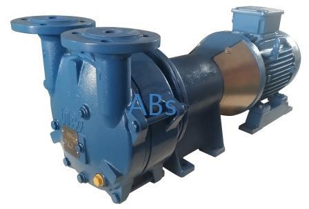 VLA125 带托架液环真空泵