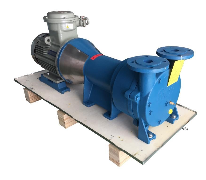 VLA250 带托架液环真空泵